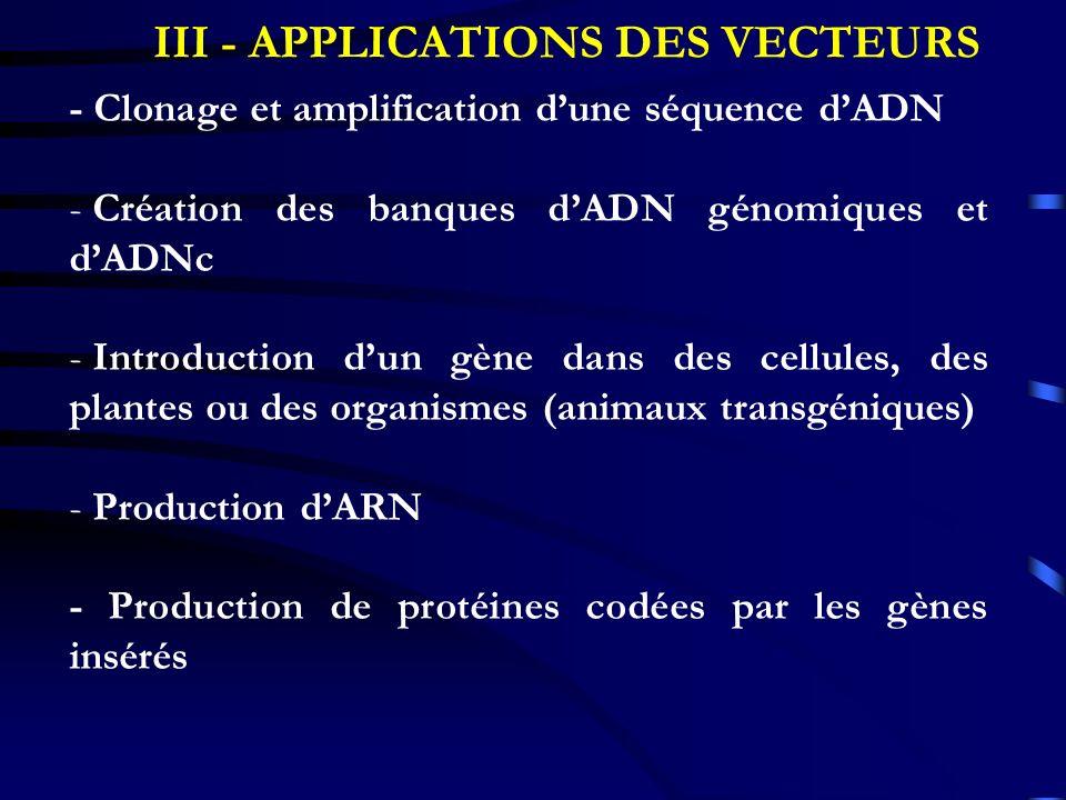 III - APPLICATIONS DES VECTEURS - Clonage et amplification dune séquence dADN - Création des banques dADN génomiques et dADNc - Introduction dun gène