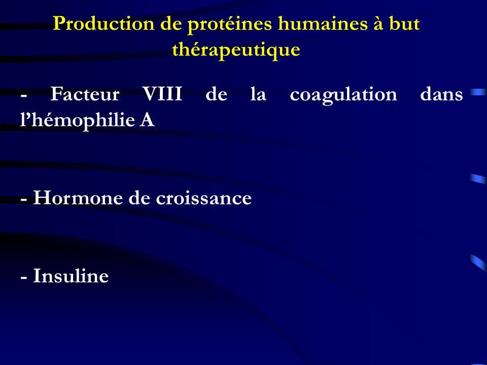 Production de protéines humaines à but thérapeutique - Facteur VIII de la coagulation dans lhémophilie A - Hormone de croissance - Insuline