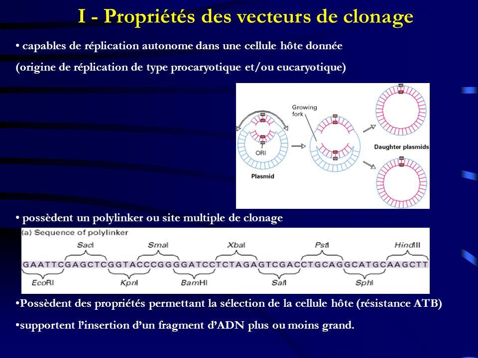 I - Propriétés des vecteurs de clonage capables de réplication autonome dans une cellule hôte donnée (origine de réplication de type procaryotique et/