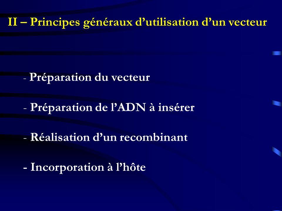 II – Principes généraux dutilisation dun vecteur - Préparation du vecteur - Préparation de lADN à insérer - Réalisation dun recombinant - Incorporatio