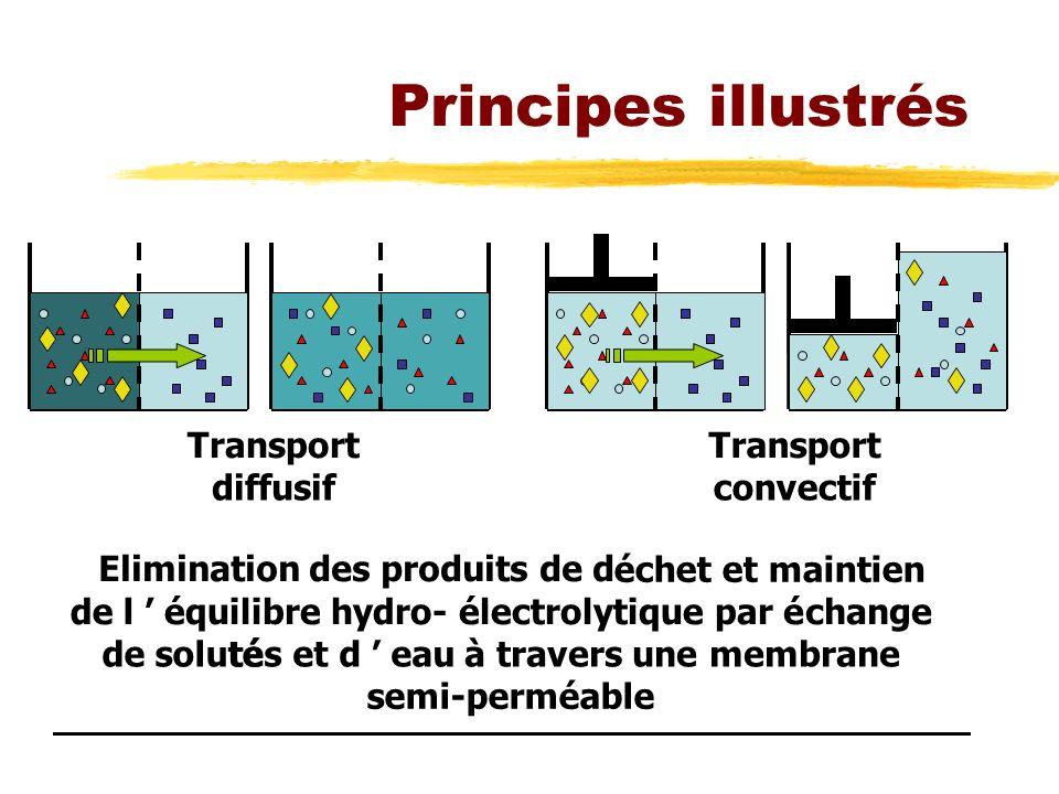 Principes illustrés Transport diffusif Transport convectif Elimination des produits de d échet et maintien de l équilibre hydro-électrolytique paréchange de solutétés et d eau à travers une membrane semi-perméable