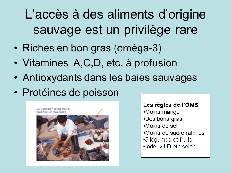 Laccès à des aliments dorigine sauvage est un privilège rare Riches en bon gras (oméga-3) Vitamines A,C,D, etc.
