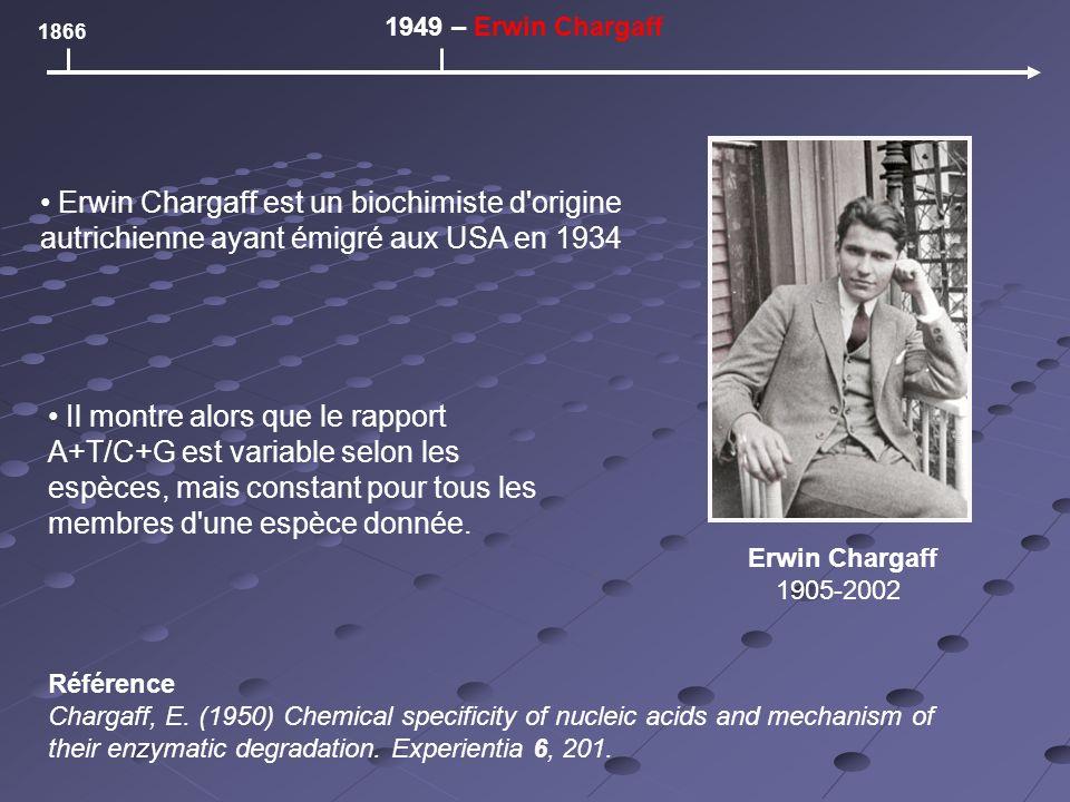 1866 1949 – Erwin Chargaff Erwin Chargaff 1905-2002 Erwin Chargaff est un biochimiste d origine autrichienne ayant émigré aux USA en 1934 Il montre alors que le rapport A+T/C+G est variable selon les espèces, mais constant pour tous les membres d une espèce donnée.