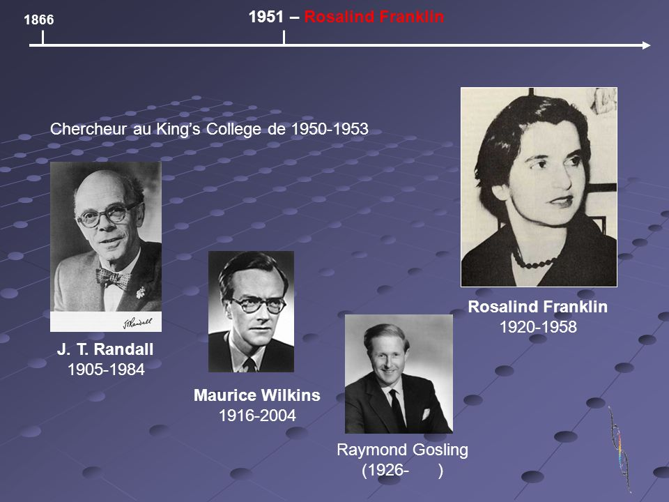 1866 1951 – Rosalind Franklin Rosalind Franklin 1920-1958 Chercheur au Kings College de 1950-1953 J.