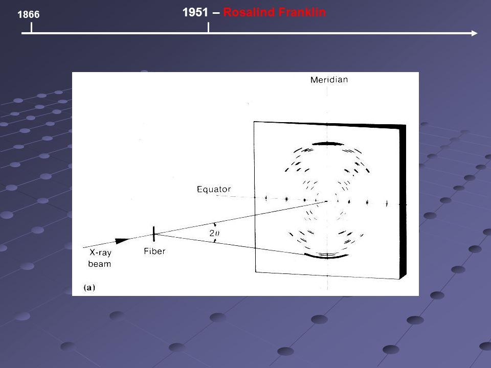 1866 1951 – Rosalind Franklin