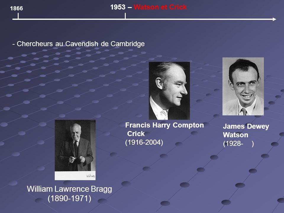 William Lawrence Bragg (1890-1971) 1866 1953 – Watson et Crick Francis Harry Compton Crick (1916-2004) James Dewey Watson (1928- ) - Chercheurs au Cavendish de Cambridge