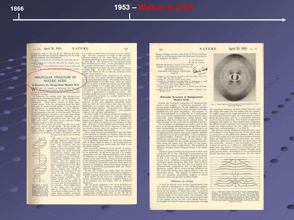 1866 1953 – Watson et Crick