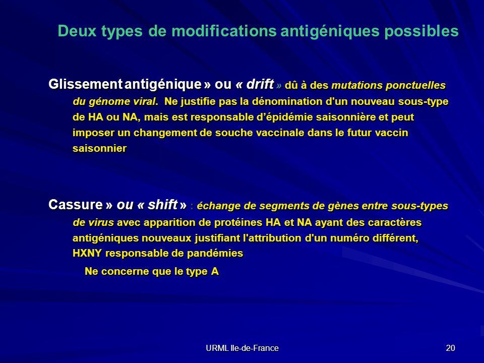 URML Ile-de-France 20 Deux types de modifications antigéniques possibles Glissement antigénique » ou « drift » dû à des mutations ponctuelles du génom