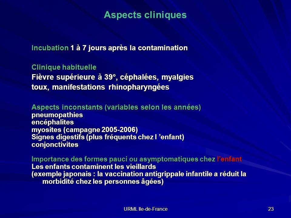URML Ile-de-France 23 Aspects cliniques Incubation 1 à 7 jours après la contamination Clinique habituelle Fièvre supérieure à 39°, céphalées, myalgies