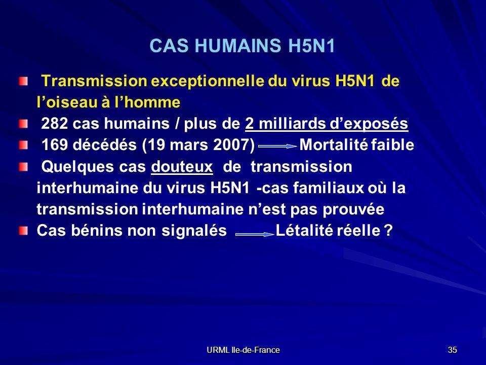 URML Ile-de-France 35 CAS HUMAINS H5N1 Transmission exceptionnelle du virus H5N1 de loiseau à lhomme 282 cas humains / plus de 2 milliards dexposés 16