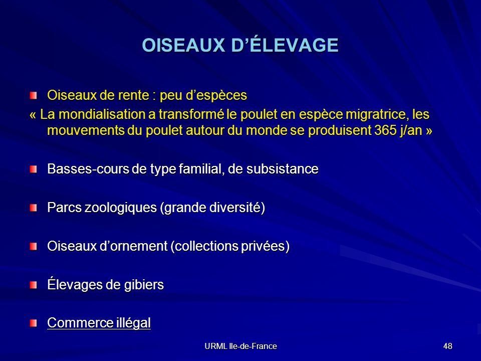 URML Ile-de-France 48 OISEAUX DÉLEVAGE Oiseaux de rente : peu despèces « La mondialisation a transformé le poulet en espèce migratrice, les mouvements