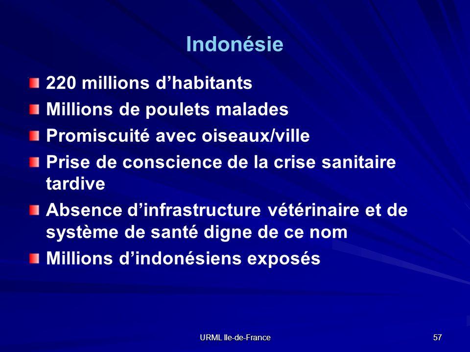 URML Ile-de-France 57 Indonésie 220 millions dhabitants Millions de poulets malades Promiscuité avec oiseaux/ville Prise de conscience de la crise san