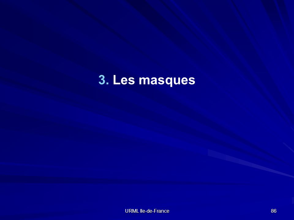 URML Ile-de-France 86 3. Les masques
