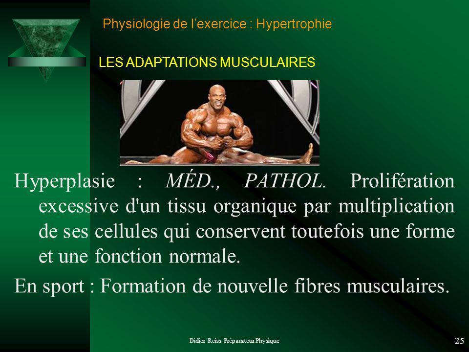 Didier Reiss Préparateur Physique 25 Physiologie de lexercice : Hypertrophie Hyperplasie : MÉD., PATHOL. Prolifération excessive d'un tissu organique