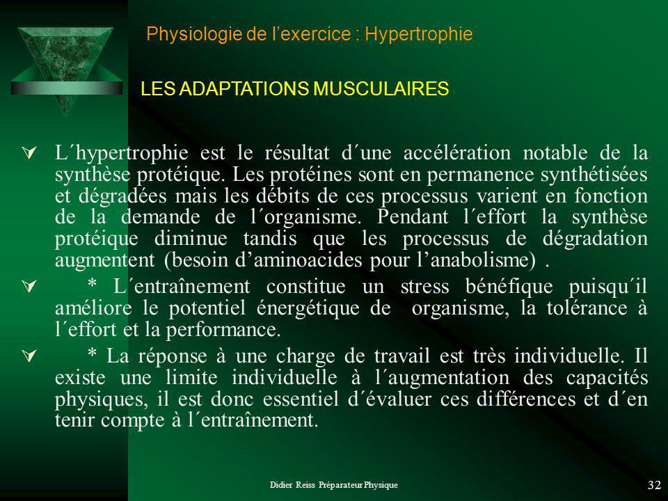 Didier Reiss Préparateur Physique 32 Physiologie de lexercice : Hypertrophie L´hypertrophie est le résultat d´une accélération notable de la synthèse protéique.