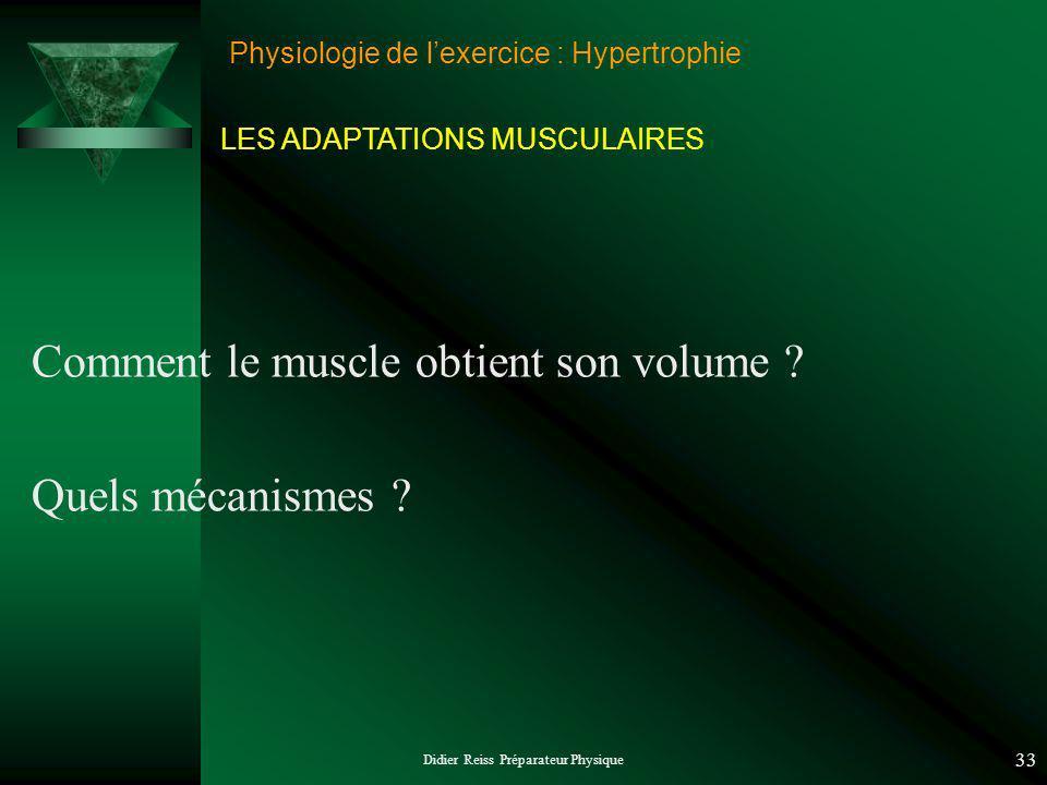 Didier Reiss Préparateur Physique 33 Physiologie de lexercice : Hypertrophie Comment le muscle obtient son volume ? Quels mécanismes ? LES ADAPTATIONS