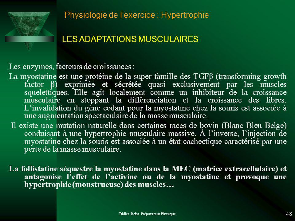 Didier Reiss Préparateur Physique 48 Physiologie de lexercice : Hypertrophie Les enzymes, facteurs de croissances : La myostatine est une protéine de