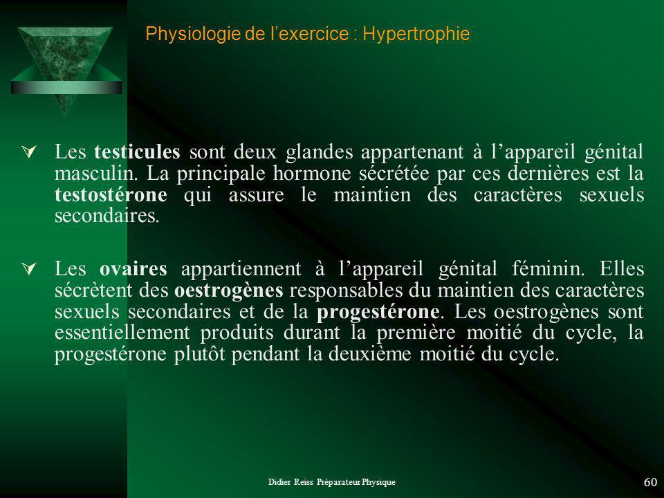 Didier Reiss Préparateur Physique 60 Physiologie de lexercice : Hypertrophie Les testicules sont deux glandes appartenant à lappareil génital masculin.