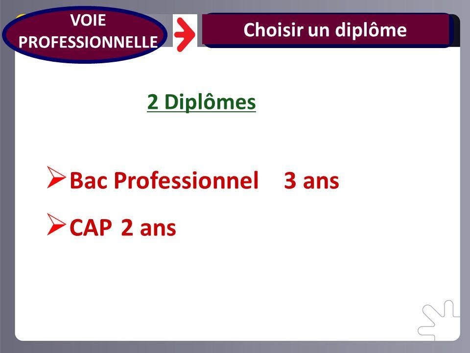 Choisir un diplôme Bac Professionnel 3 ans CAP 2 ans VOIE PROFESSIONNELLE 2 Diplômes