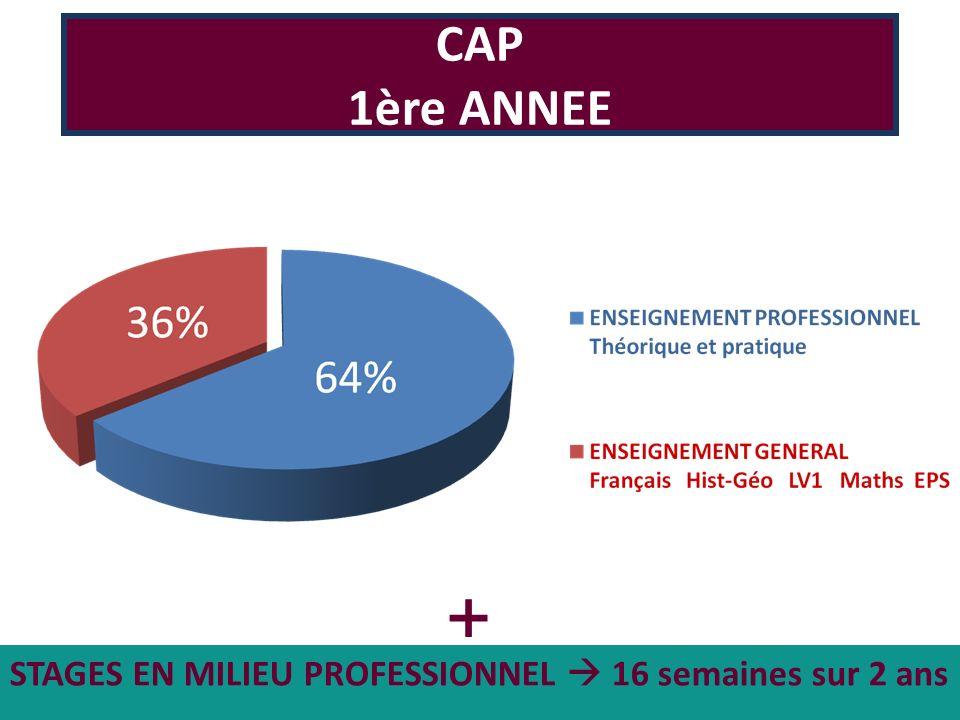 STAGES EN MILIEU PROFESSIONNEL 16 semaines sur 2 ans CAP 1ère ANNEE +