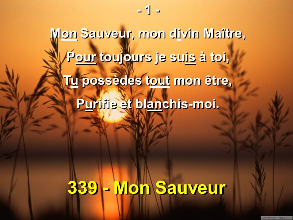 339 - Mon Sauveur - 1 - Mon Sauveur, mon divin Maître, Pour toujours je suis à toi, Tu possèdes tout mon être, Purifie et blanchis-moi. - 1 - Mon Sauv