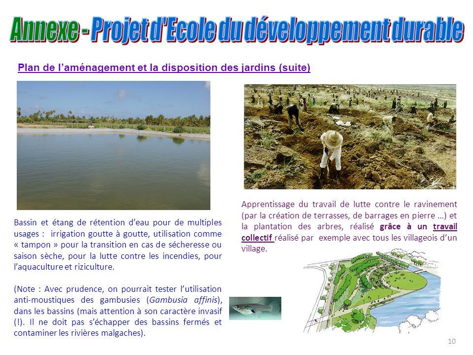 Plan de laménagement et la disposition des jardins (suite) Bassin et étang de rétention deau pour de multiples usages : irrigation goutte à goutte, ut