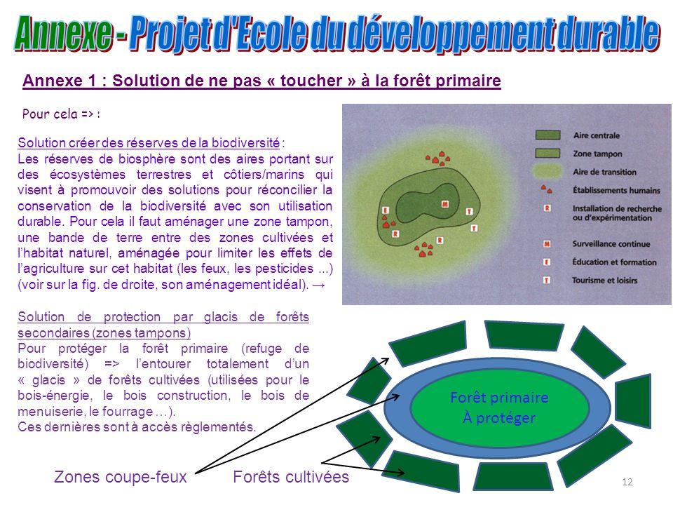12 Annexe 1 : Solution de ne pas « toucher » à la forêt primaire Pour cela => : Forêt primaire À protéger Solution de protection par glacis de forêts