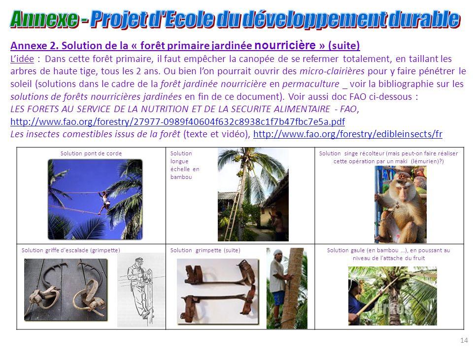 14 Annexe 2. Solution de la « forêt primaire jardinée nourricière » (suite) Lidée : Dans cette forêt primaire, il faut empêcher la canopée de se refer