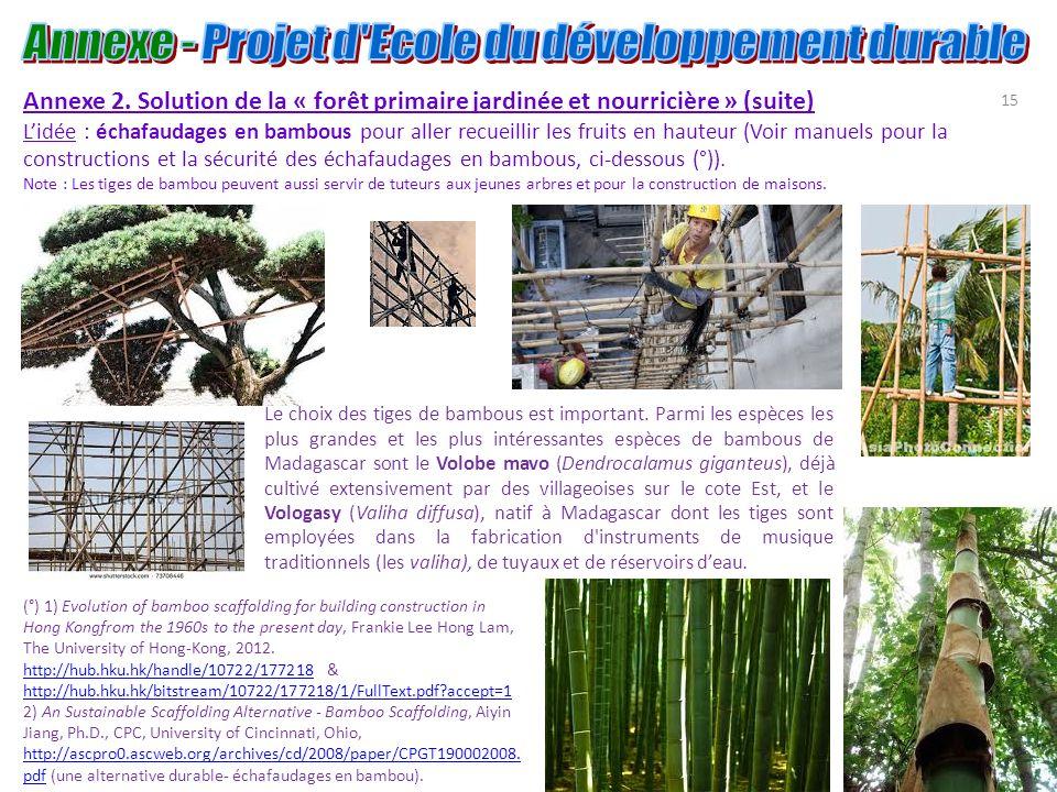 15 Annexe 2. Solution de la « forêt primaire jardinée et nourricière » (suite) Lidée : échafaudages en bambous pour aller recueillir les fruits en hau