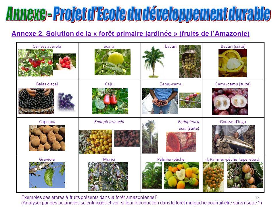 18 Annexe 2. Solution de la « forêt primaire jardinée » (fruits de lAmazonie) Cerises acerolaacarabacuriBacuri (suite) Baies daçaiCajuCamu-camuCamu-ca