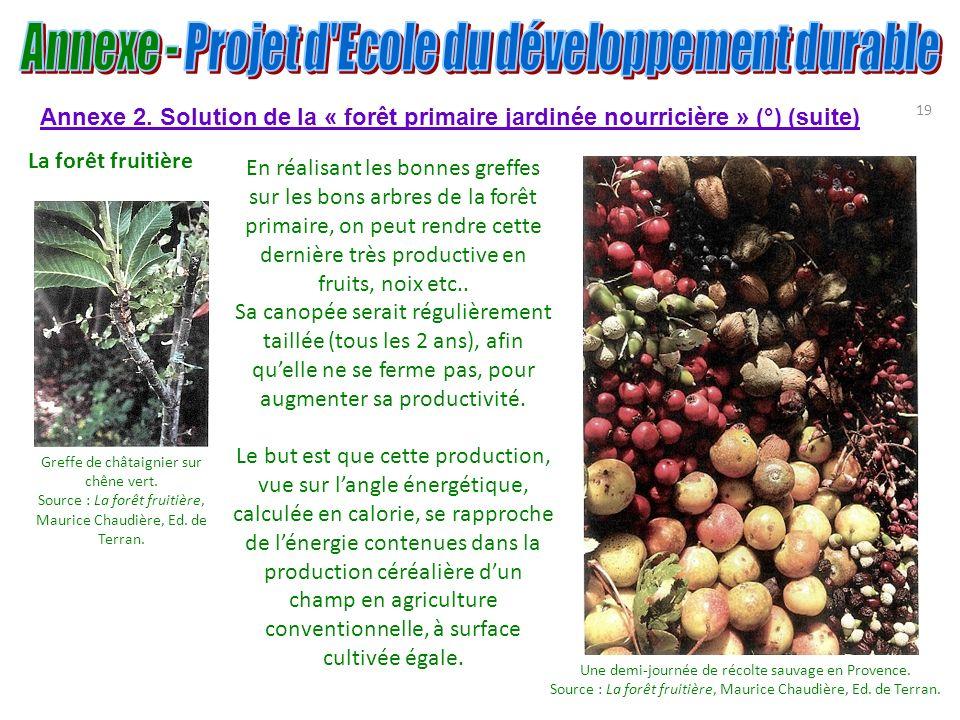 19 Annexe 2. Solution de la « forêt primaire jardinée nourricière » (°) (suite) La forêt fruitière Une demi-journée de récolte sauvage en Provence. So