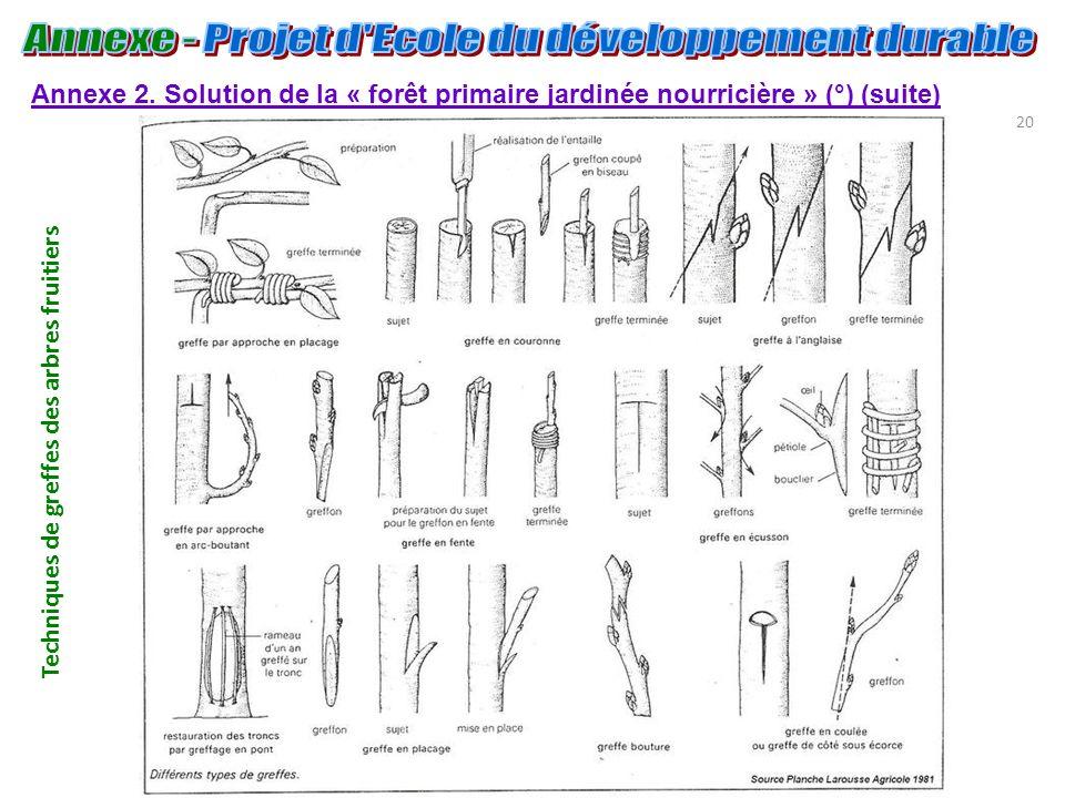 20 Annexe 2. Solution de la « forêt primaire jardinée nourricière » (°) (suite) Techniques de greffes des arbres fruitiers