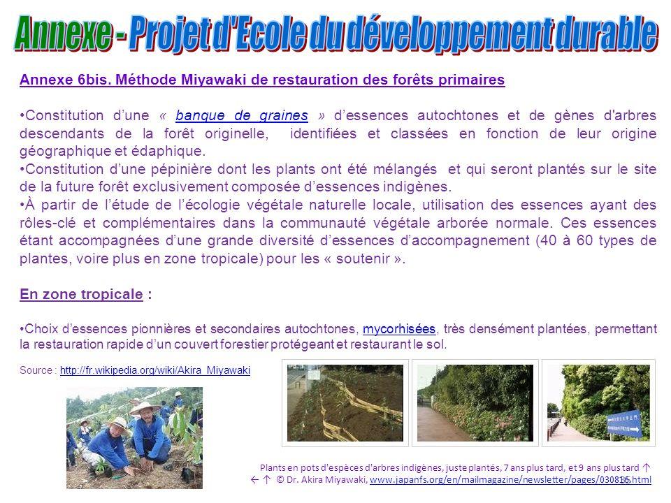 35 Annexe 6bis. Méthode Miyawaki de restauration des forêts primaires Constitution dune « banque de graines » dessences autochtones et de gènes d'arbr
