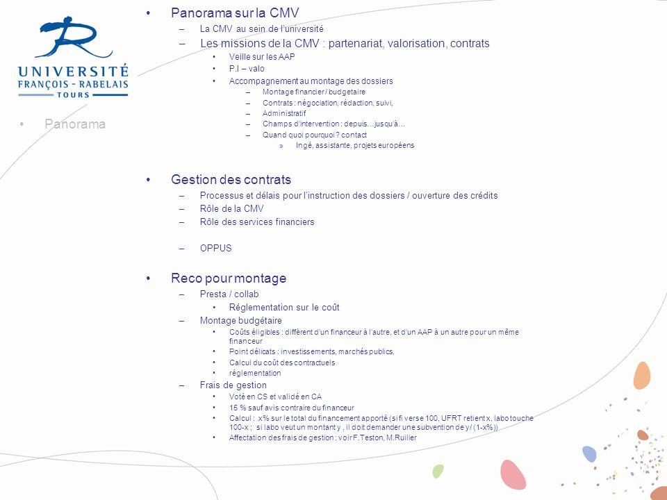 Panorama sur la CMV –La CMV au sein de luniversité –Les missions de la CMV : partenariat, valorisation, contrats Veille sur les AAP P.I – valo Accompa