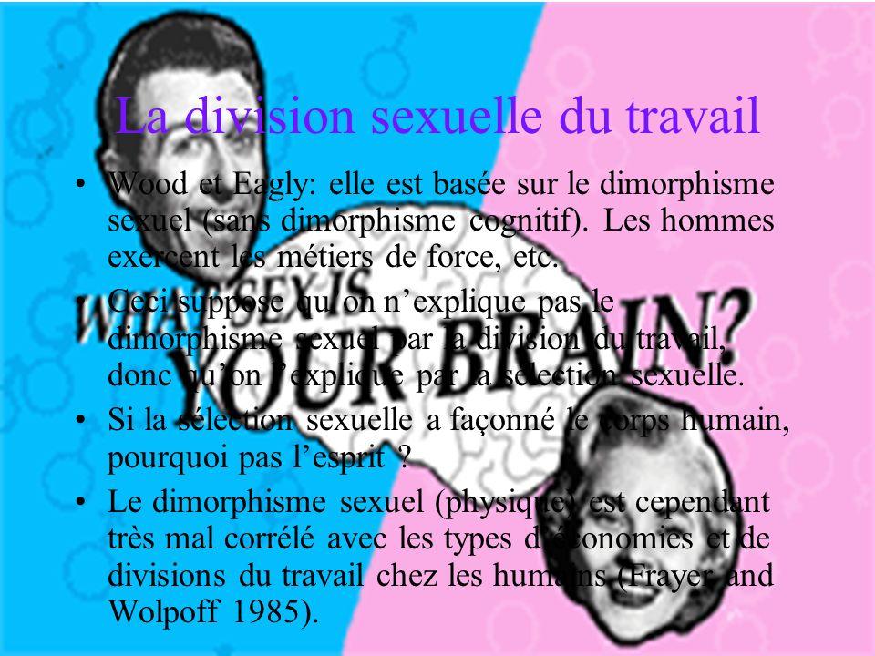La division sexuelle du travail Wood et Eagly: elle est basée sur le dimorphisme sexuel (sans dimorphisme cognitif).