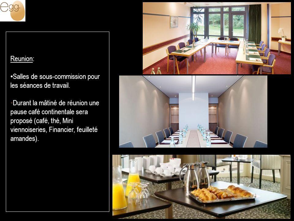 Reunion: Salles de sous-commission pour les séances de travail. Durant la mâtiné de réunion une pause café continentale sera proposé (café, thé, Mini