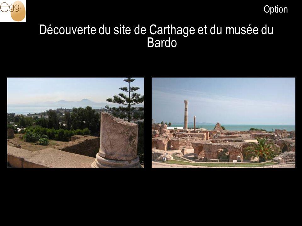 Découverte du site de Carthage et du musée du Bardo Option