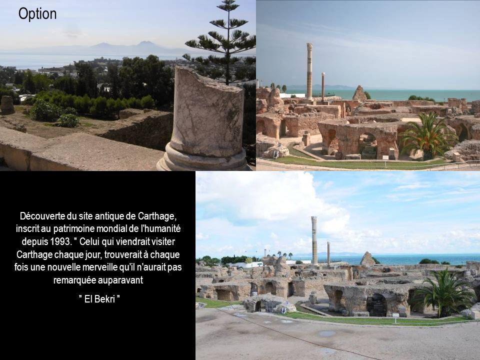 Découverte du site antique de Carthage, inscrit au patrimoine mondial de l'humanité depuis 1993.