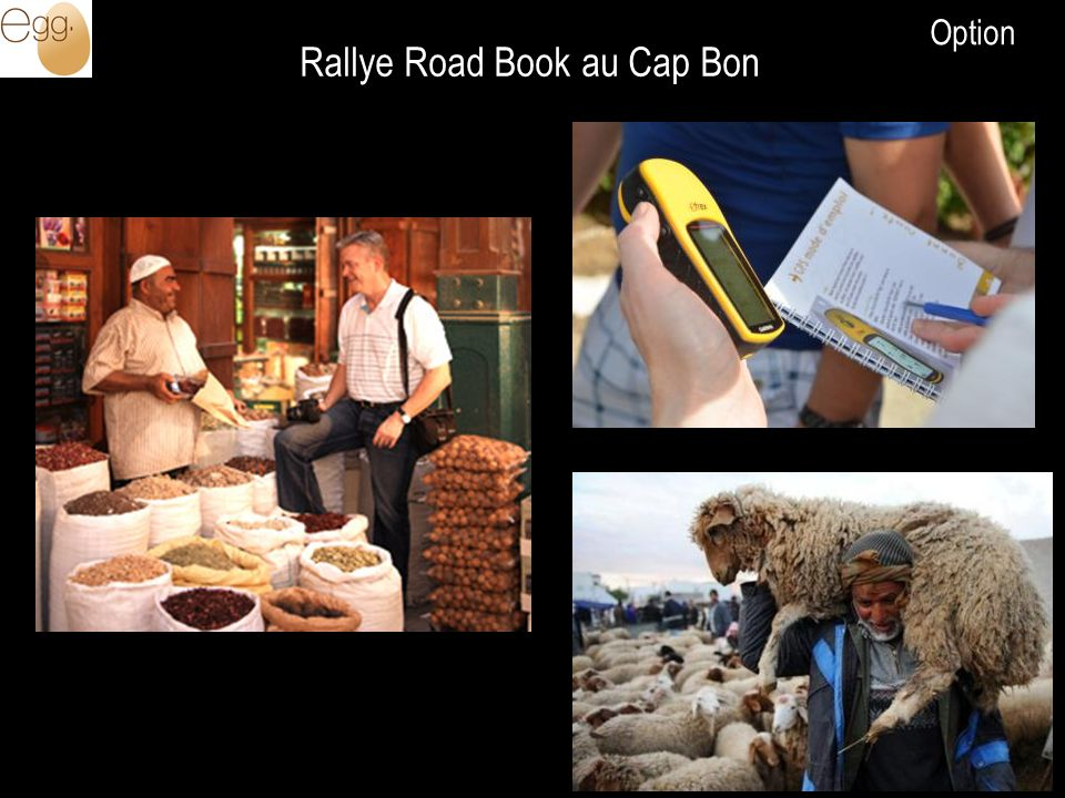 Rallye Road Book au Cap Bon Option