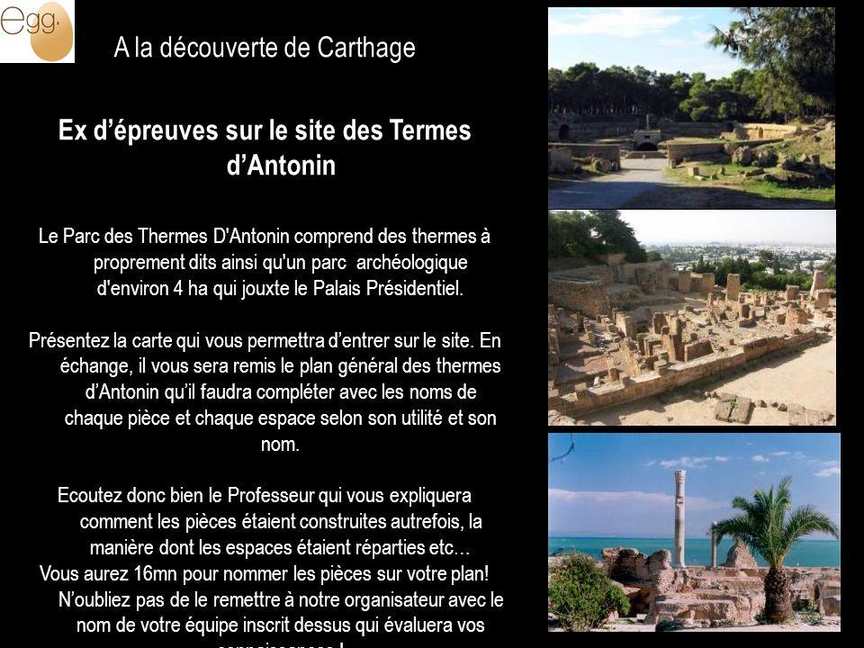 A la découverte de Carthage Ex dépreuves sur le site des Termes dAntonin Le Parc des Thermes D'Antonin comprend des thermes à proprement dits ainsi qu
