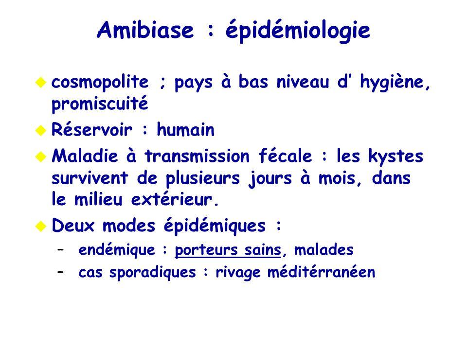 Amibiase : épidémiologie cosmopolite ; pays à bas niveau d hygiène, promiscuité Réservoir : humain Maladie à transmission fécale : les kystes surviven