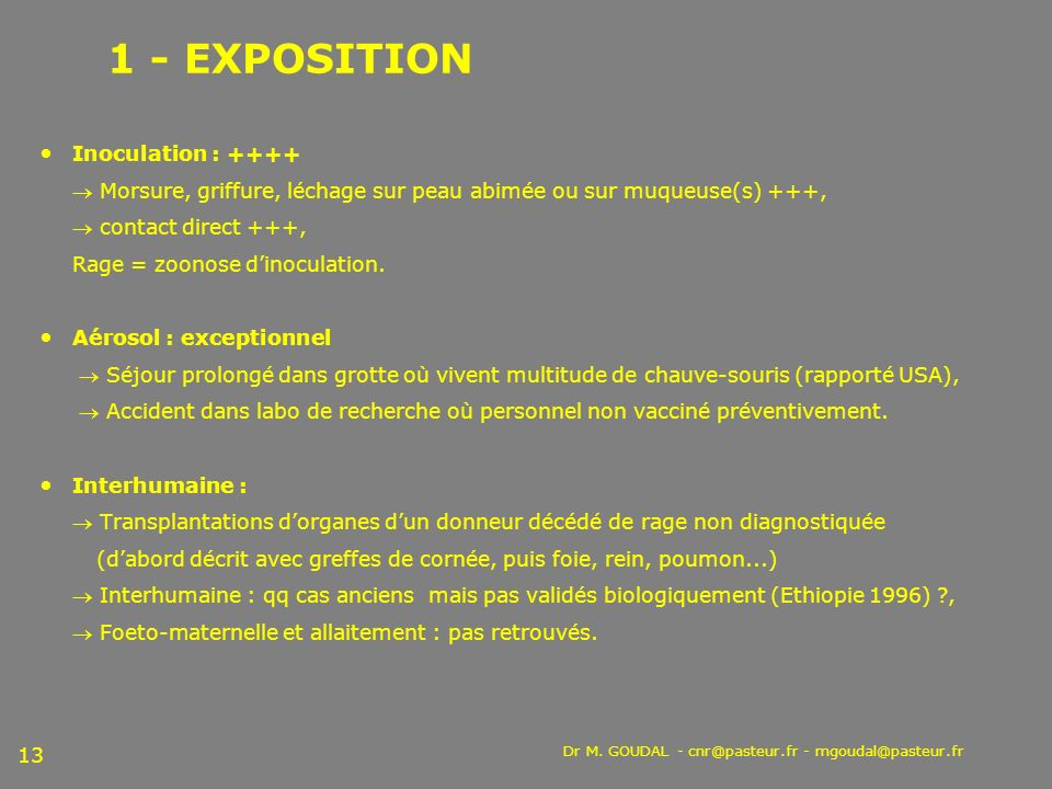 Dr M. GOUDAL - cnr@pasteur.fr - mgoudal@pasteur.fr 13 1 - EXPOSITION Inoculation : ++++ Morsure, griffure, léchage sur peau abimée ou sur muqueuse(s)
