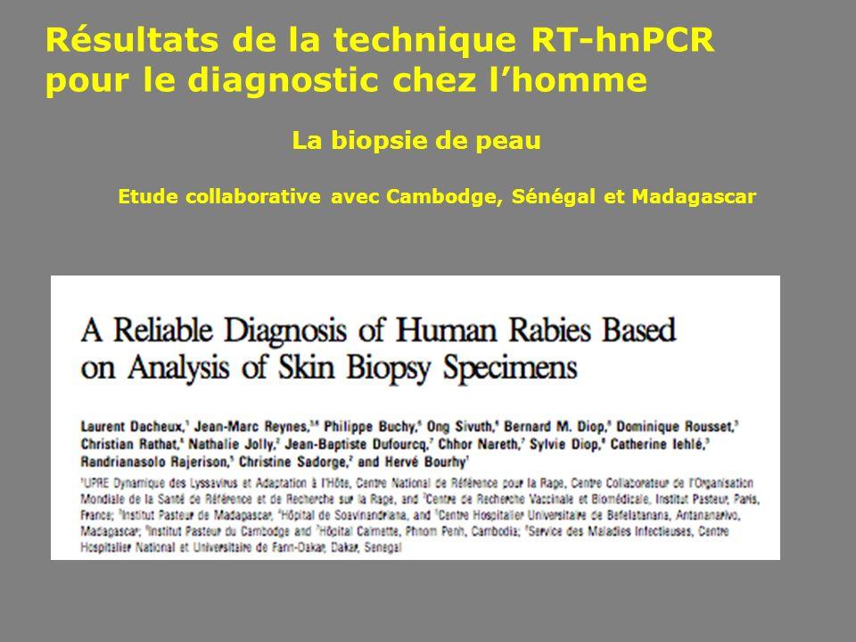 Résultats de la technique RT-hnPCR pour le diagnostic chez lhomme Etude collaborative avec Cambodge, Sénégal et Madagascar La biopsie de peau
