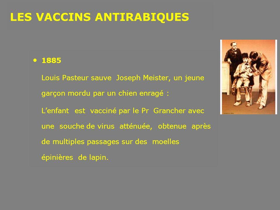 1885 Louis Pasteur sauve Joseph Meister, un jeune garçon mordu par un chien enragé : Lenfant est vacciné par le Pr Grancher avec une souche de virus a