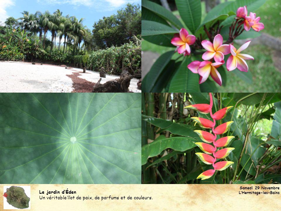 Le jardin dÉden Un véritable îlot de paix, de parfums et de couleurs. Samedi 29 Novembre LHermitage-les-Bains