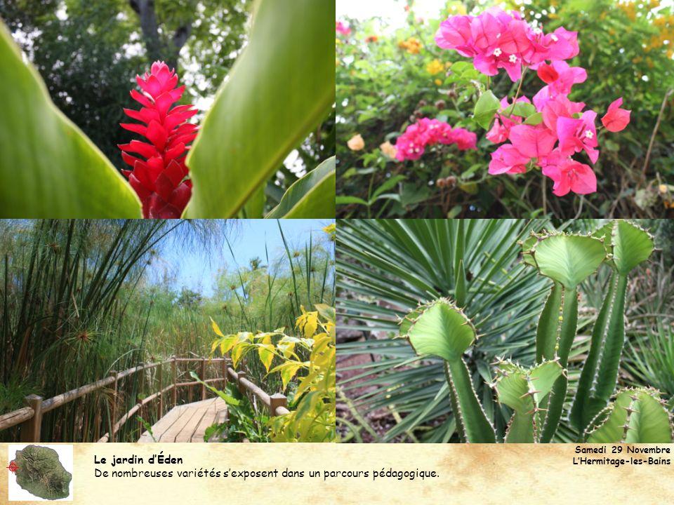 Le jardin dÉden De nombreuses variétés sexposent dans un parcours pédagogique.