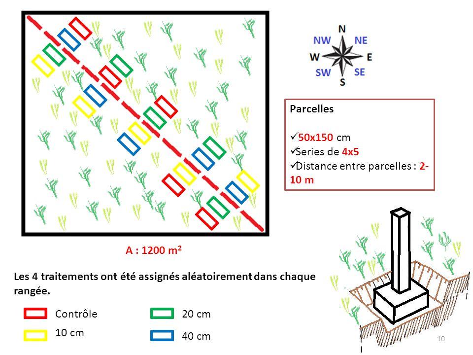 A : 1200 m 2 Parcelles 50x150 cm Series de 4x5 Distance entre parcelles : 2- 10 m Les 4 traitements ont été assignés aléatoirement dans chaque rangée.