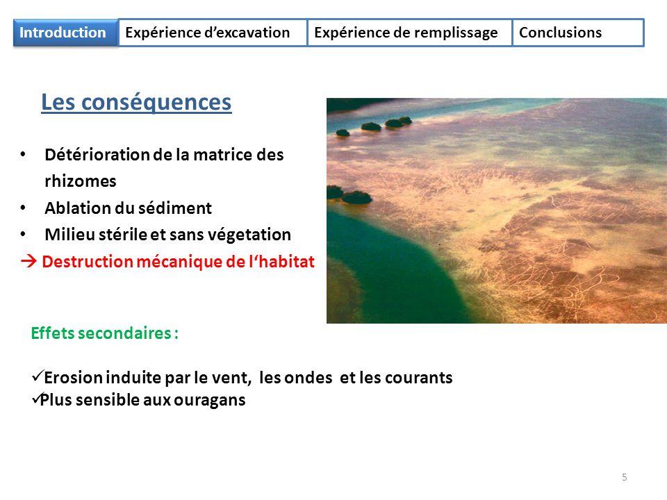IntroductionExpérience dexcavation Expérience de remplissage Conclusions 20002001200220032005 Septembre (Démarrage) Janvier MaiAvril Mai SeptembreAoût 1.