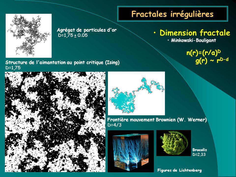 Fractales irrégulières Dimension fractale Minkowski-Bouligant n(r)=(r/a) D g(r) ~ r D-d Agrégat de particules d'or D=1,75 ± 0.05 Structure de l'aimant