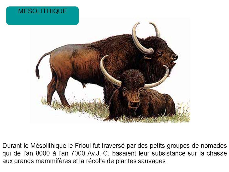 Durant le Mésolithique le Frioul fut traversé par des petits groupes de nomades qui de lan 8000 à lan 7000 Av.J.-C.